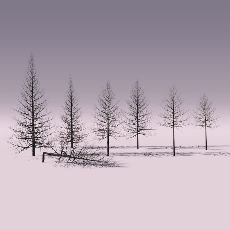 3d dead trees model