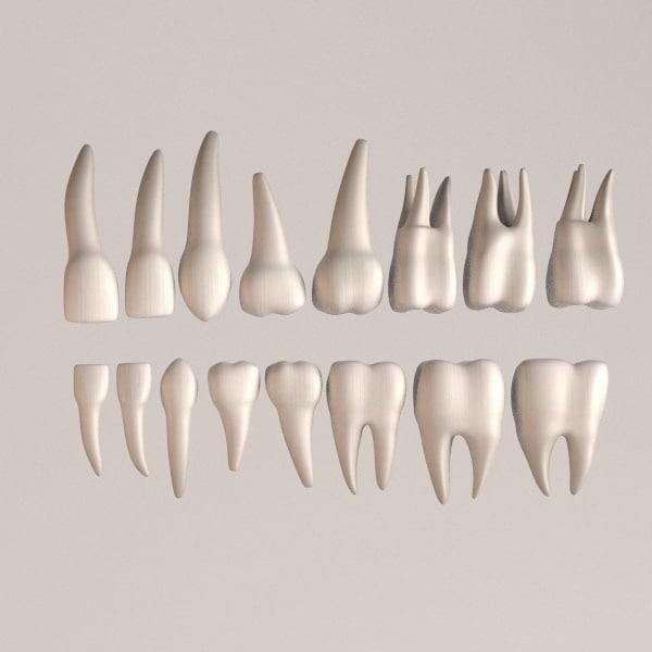 maya human teeth