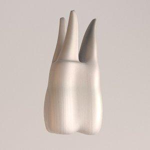 molar 3d fbx