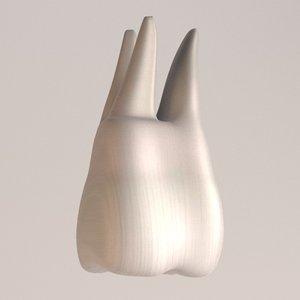 molar teeth 3d model