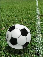 soccer ball football 3d max