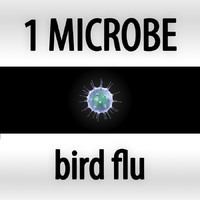 bird flu - influenza a virus h5n1