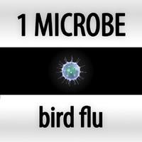 3d microbes micro organisms model