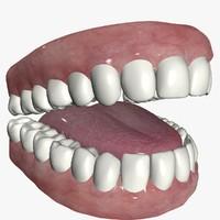 Mouth Interior