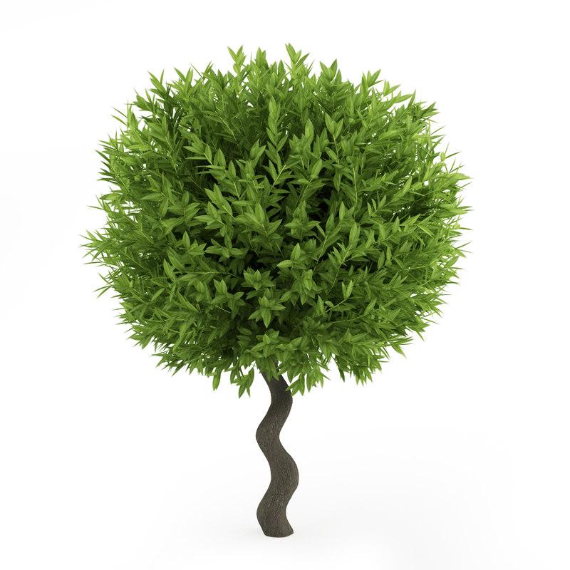 3d plant tree model