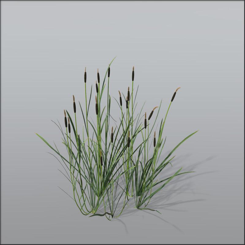 corndog grass 3d obj