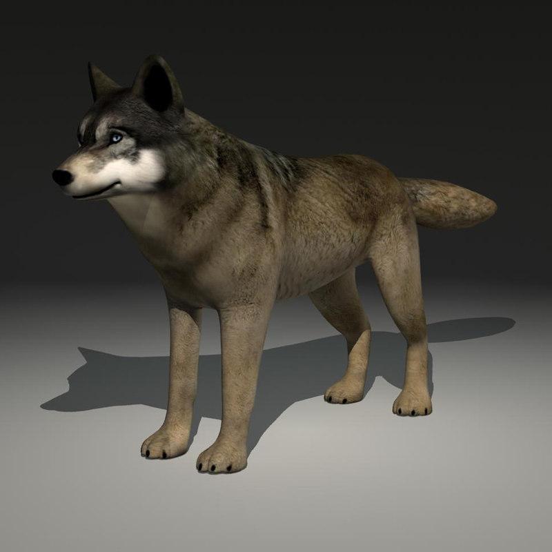 wolf dog max