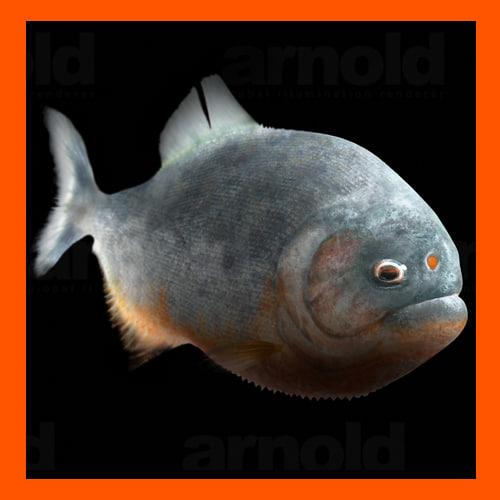 realistic piranha 3d model