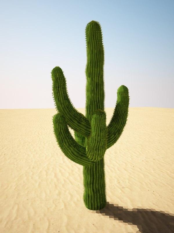 3ds max carnegiea gigantea cactus