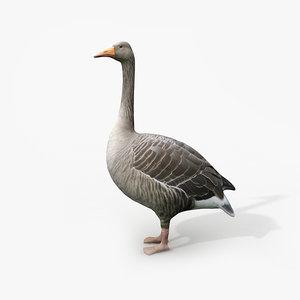 3d model of goose family