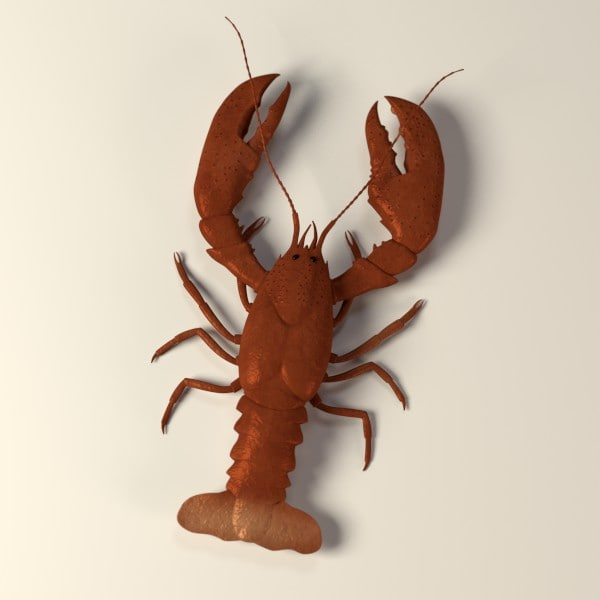 lobster c4d