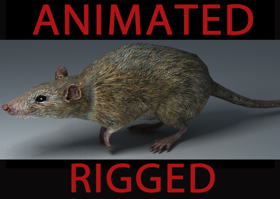max rat animation