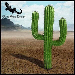 saguaro cactus 3ds
