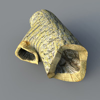 medium hollow log 3d max