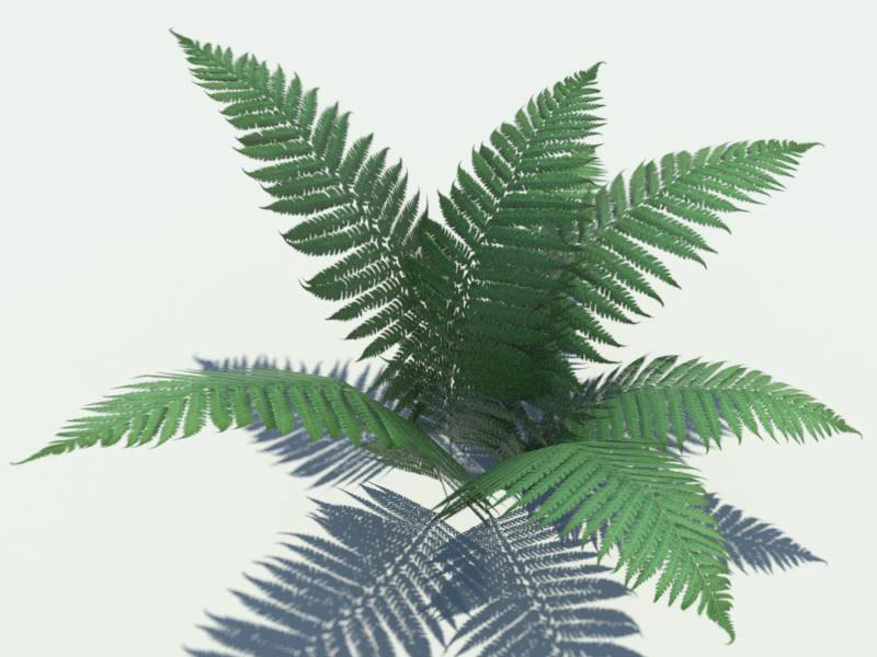 3d grim designs ferns model