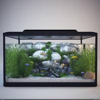 max aquarium