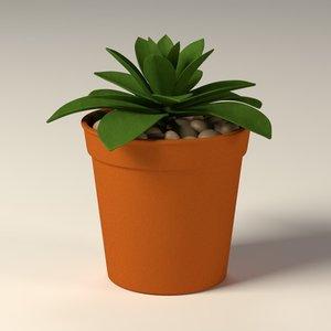 suculent pot 3d 3ds