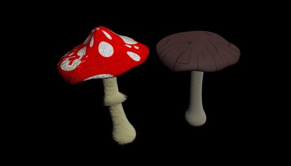 3d model mushrooms autumn toadstool