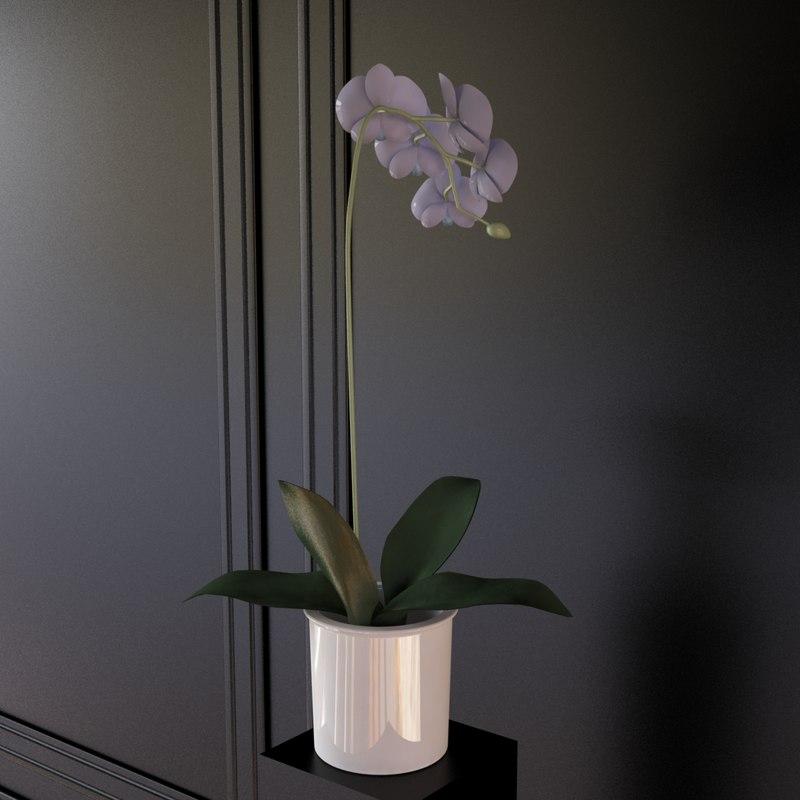 max flower pot planter
