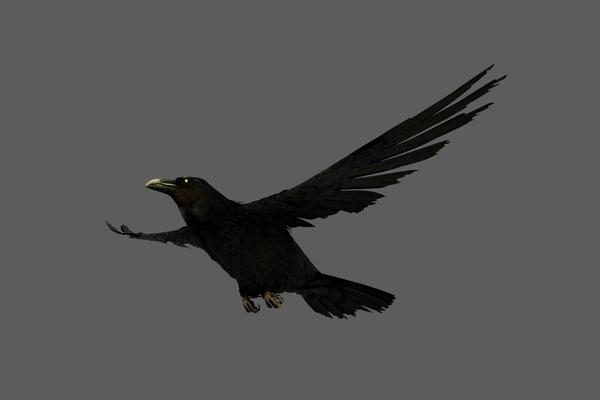 crow obj