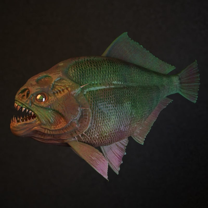 3d model piranha fish for Pictures of piranha fish