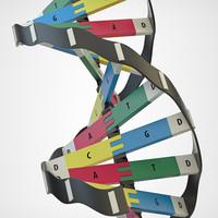 DNA_Model