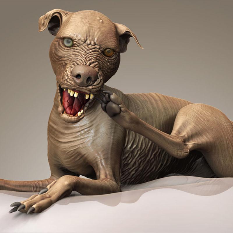 Free Sam World Ugliest Dog 3d Model