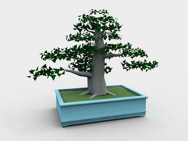 bonsai pot trees max