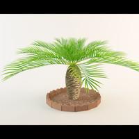 Palm tree 2.0