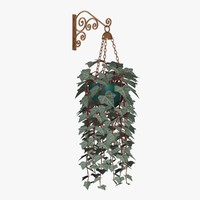 PL 01English Ivy (Copper)