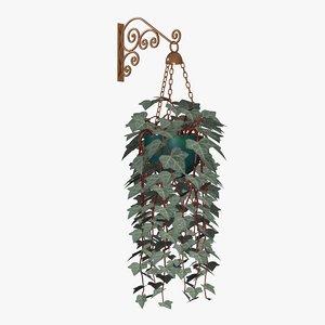 english ivy plants 3d model
