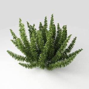 free max mode small plant exterior