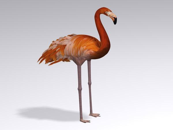3d max flamingo pink bird