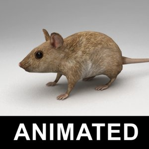 3d rigged mouse walk animation