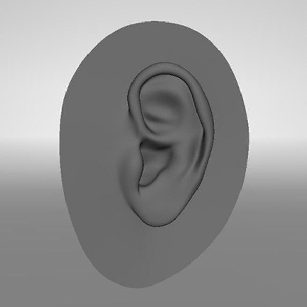 3d realistic human ear