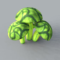 fungi fungas mushrooms 3d model