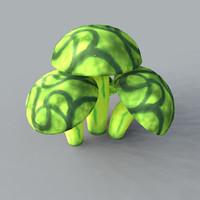fungi fungas mushrooms 3d model
