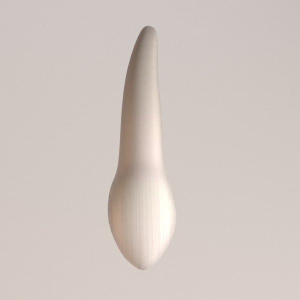 3ds max canine tooth