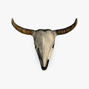 3d model of buffalo skull