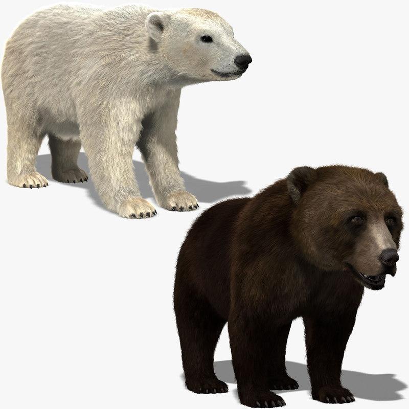 obj bears fur