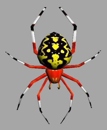 3d model marbled spider