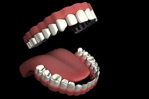 3d teeth tongue mouth set