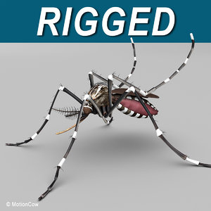 3d model mosquito rigged blood