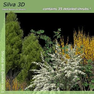 3d shrub bush 1 model