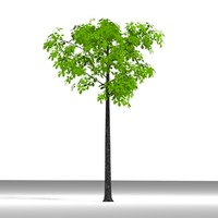 3ds max plane tree