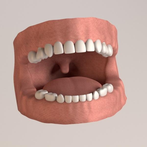 3dsmax child teeth gums