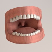3dsmax child teeth gums