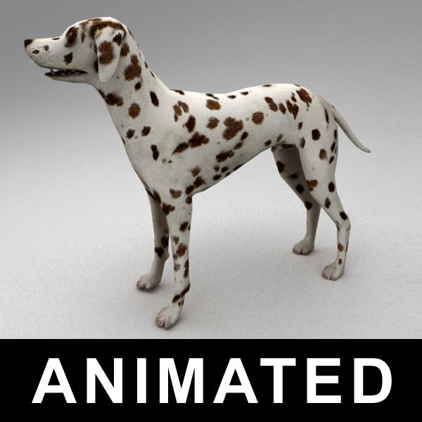 3d model rigged dalmatian bones animation