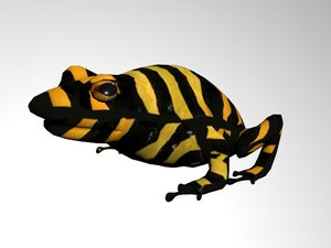 frog poisonous darts 3d fbx