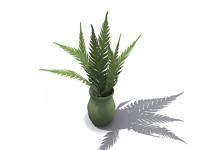 max plant pot